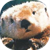electricotter's avatar