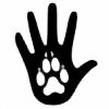 ElementWolf2105's avatar