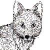 ElenaB980731's avatar