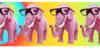 Elephant-Fans