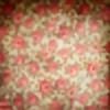 elhazia's avatar