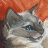 elipse's avatar