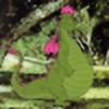 ElliottFan13's avatar