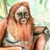 ElliugOmrot's avatar