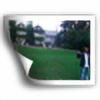 Elric38's avatar