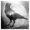 Elvenbreath's avatar