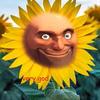 EmberDevis's avatar