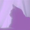 EmmyMeowy's avatar