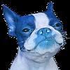 emsody's avatar