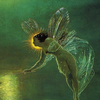 Enchantedpn's avatar