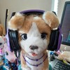 Encorepride's avatar