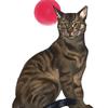 EndlessBlueOcean's avatar