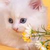 enemyhideout's avatar