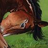 enhingst's avatar