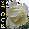 Epicwish-stock's avatar