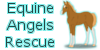 Equine-Angels-Rescue's avatar