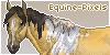 Equine-Pixel's avatar
