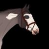 EquineEllieana's avatar