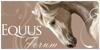 Equus-Forum
