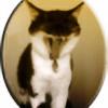 Esil90's avatar