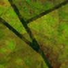 esintu's avatar