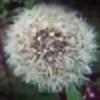 esiteru's avatar