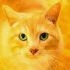 EssieH13's avatar