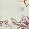 estilevia's avatar