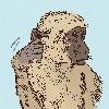 Ettore-Mazza's avatar