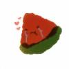 euintermelon's avatar