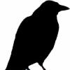 Euv's avatar