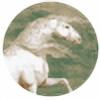 EverApril's avatar