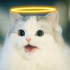 Everythingf4ngirl's avatar
