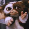 evilpoony's avatar