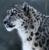 EvrydayExtreme's avatar