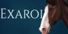 Exaroi-Horse