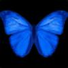 Exchef123's avatar