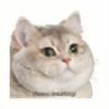 Exisilium's avatar