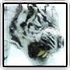 f4pple's avatar