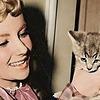 fairychamber's avatar
