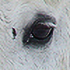 Fairyhorse's avatar