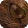 Falifer's avatar