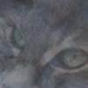 Fallenjay's avatar
