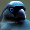 FallenShadow95's avatar