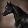 Falling-Comets's avatar