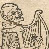 fancybirdy's avatar