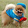 fancyultrafresh's avatar