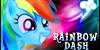Fans-of-RainbowDash