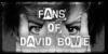 FansOfDavidBowieClub