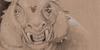 FantasyGraphite's avatar